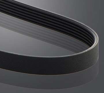 Elastic belts